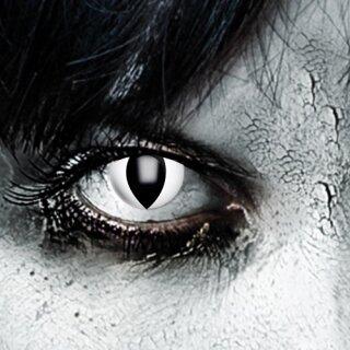 Farbig Weiß/Schwarze Kontaktlinsen Black Cat 3 Monate