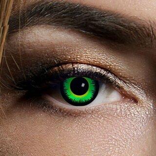 Kontaktlinsen Green Wolf 3 Monate